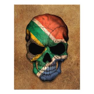 Cráneo surafricano envejecido y llevado de la band anuncio