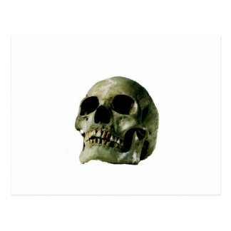 Cráneo Tarjeta Postal