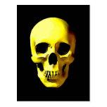 Cráneo Tarjetas Postales