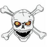 Cráneo y bandera pirata esculturas fotograficas