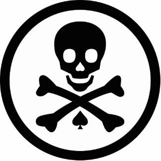 Cráneo y bandera pirata llavero fotográfico