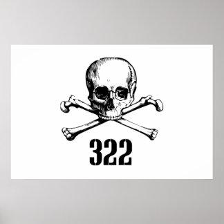 Cráneo y huesos 322 poster