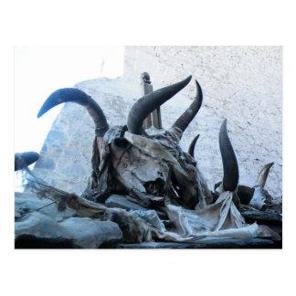 Cráneos de los yacs en Tíbet Postales