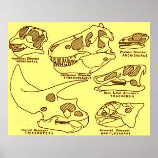 Cráneos del dinosaurio posters