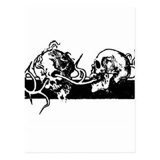 Cráneos en una vid. Circa México 1901 Tarjeta Postal
