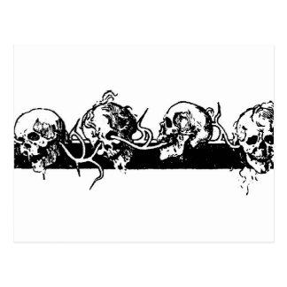 Cráneos en una vid. Circa México 1901 Tarjetas Postales