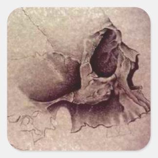 cráneos pegatina cuadrada