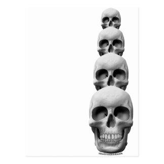 Cráneos - vertical postales