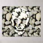 Cráneos y piedras impresiones