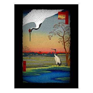 Cranes and Blue Water Postcard