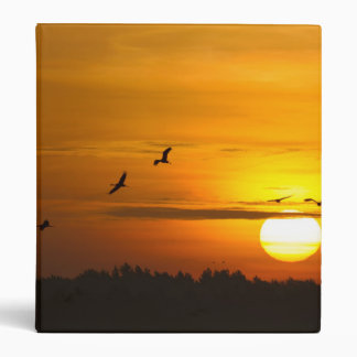 Cranes at sunrise binder