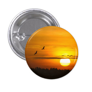 Cranes at sunrise pinback button