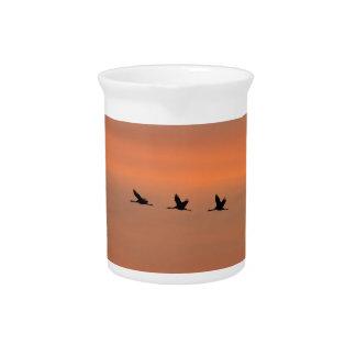 Cranes at sunrise drink pitcher