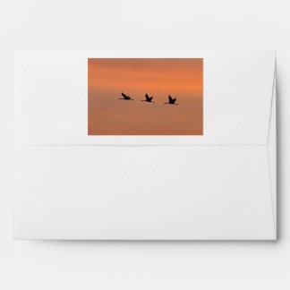 Cranes at sunrise envelope