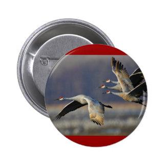 cranes pinback buttons