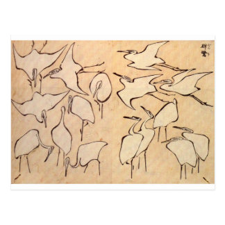 Cranes from Quick Lessons in Simplified Drawing Postcard