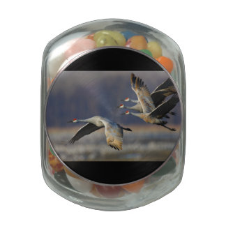 cranes in flight jelly belly candy jars