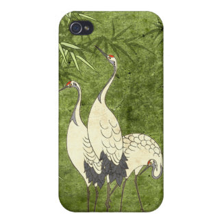 Cranes in the Bamboo Forest iPhone 4/4S Cover