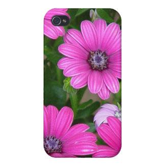 Cranesbill Geranium (Pink Flowers) iPhone 4 Case
