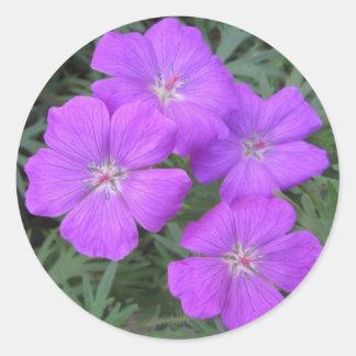 Cranesbill Geranium Purple Classic Round Sticker