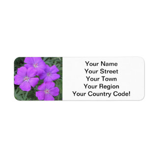Cranesbill Geranium Purple Label