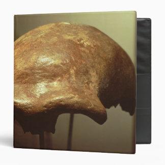 Cranium of a Neanderthal Binder