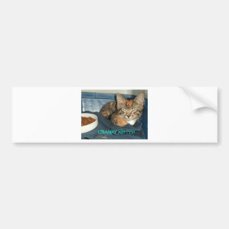 Cranky Kitty Bumper Sticker