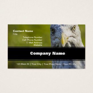 Cranky Old Seagull (Add Your Own Text) Business Card