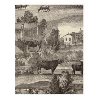 Cranmoor Farm, Toms River, NJ Postcard