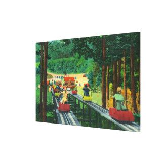 Cranmore Mountain Ski-Mobile in Summertime Canvas Print