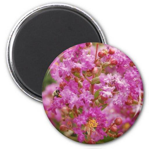 Crape Myrtle Blossom Magnet