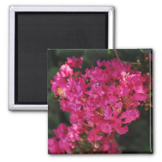 Crape Myrtle Flower Magnet