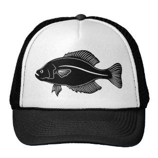 Crappie Fish Trucker Hat