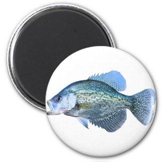 Crappie fishing 2 inch round magnet