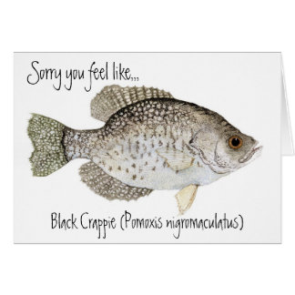 Crappie get well card