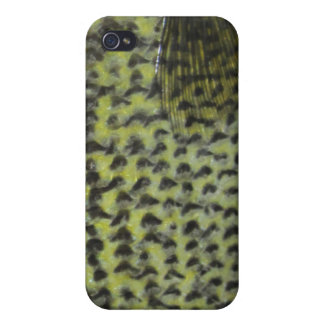 Crappie iPhone Case Cases For iPhone 4