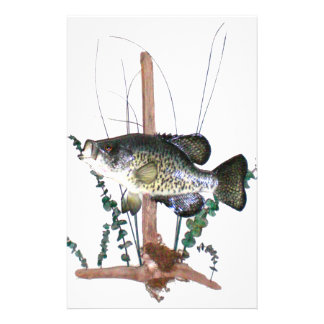 Crappie Mount Stationery