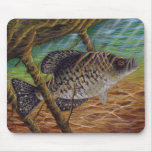 crappie mousepads