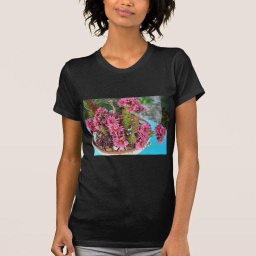 Crassula Flowers Tshirt