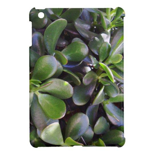 Crassula ovata cover for the iPad mini