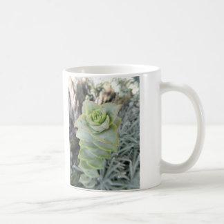Crassula perforata coffee mug