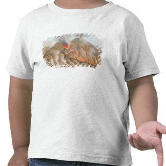 Cráter del monte Vesubio de un dibujo original Camiseta