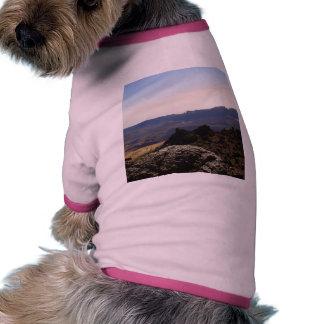 Cráter interior camisas de mascota