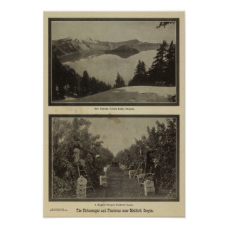 Crater Lake Oregon Orchard scene Poster