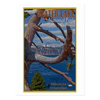 Crater Lake - Summer 2011 Post Card