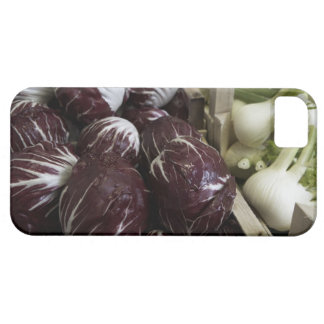 Crates of red cabbages and fennel iPhone SE/5/5s case