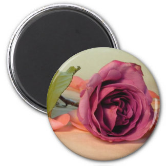 Crave the Rose Magnet