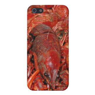 Crawdaddies iPhone SE/5/5s Case