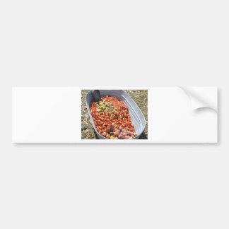 Crawfish boil. car bumper sticker