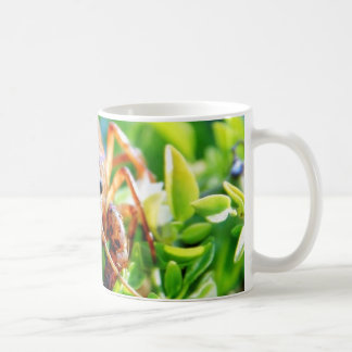 Crawfish Crawdads Crayfish Coffee Mug